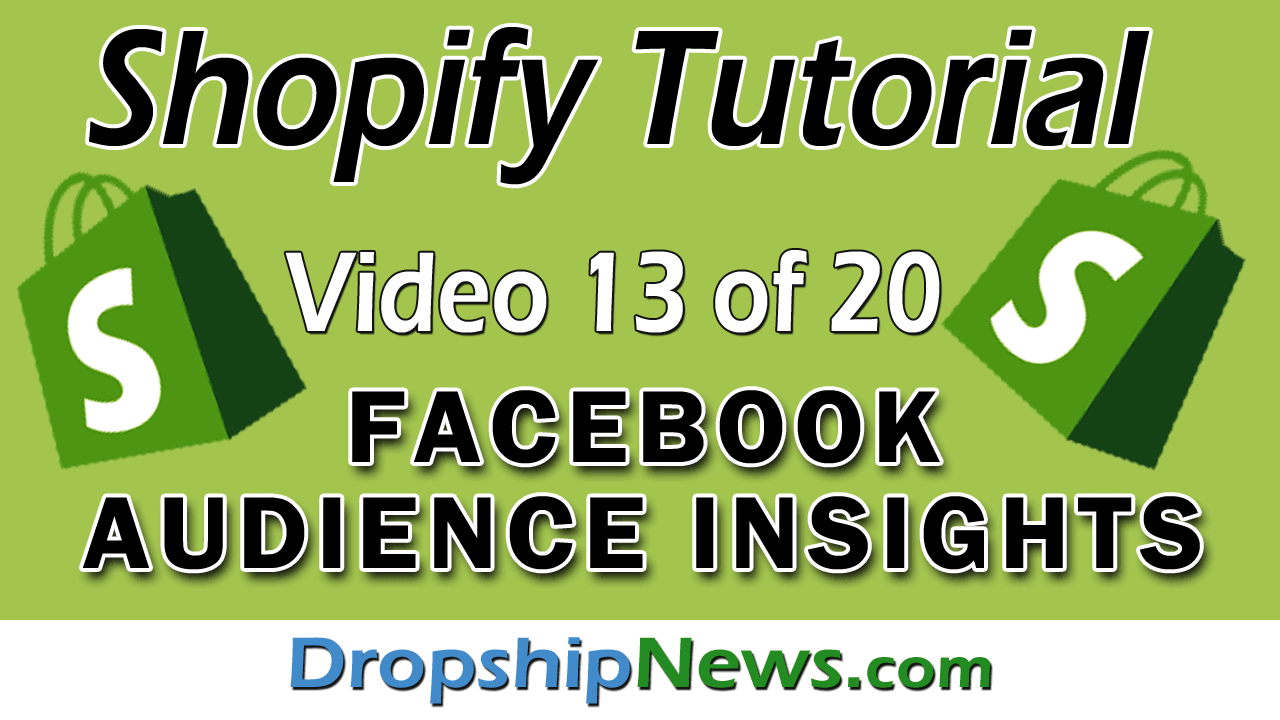 Shopify Tutorial For Beginners – Facebook Audience Insights