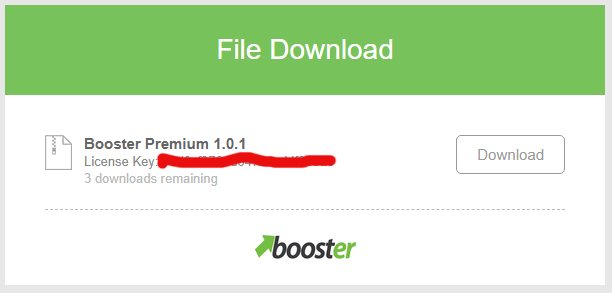 Download Booster Theme